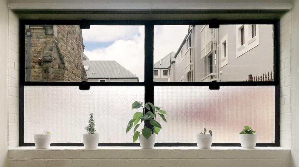 Window-01a.jpg