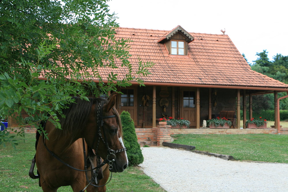 Welcome - Welcome to Old Oak House part of our home in this peaceful corner of Zargorje close by the beautiful town of Varaždin. This welcome pack is here to help you get acquainted with the area and your holiday apartment. We have uploaded our 10 years of local area knowledge to help you enjoy your stay. It includes recommended restaurants, walks, cycle rides, things to do as well as the usual useful information and some operating instructions. You will find a copy of this guide in the home, which you are welcome to take out with you during your stay so you need not print this out.