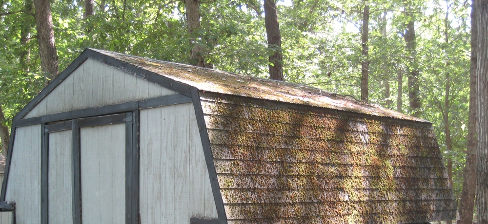 8b roof cleaning pic.JPG