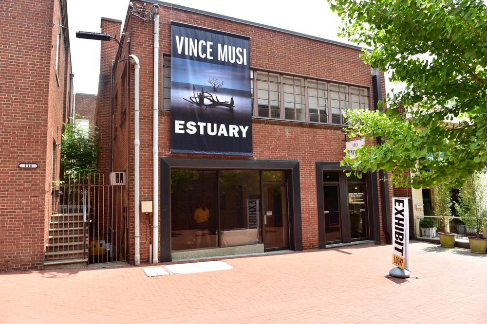 Vincent J. Musi, <em>Estuary</em>