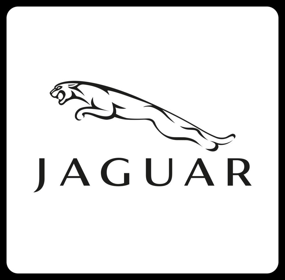Jaguarnb.png