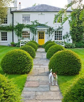 This beautiful greenery leading up to a charming home. Keeping the landscaping all one color helps simplify the yard and focus on the natural beauty. And the pop of color on the door makes you wonder what's inside. And the little dog is perfect!