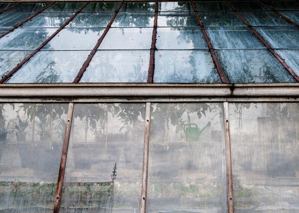 Drying crops, glasshouse, Tyntesfield