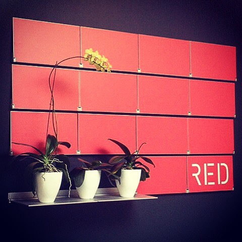 Bold and minimal. #red #shelving #branding #modern #design