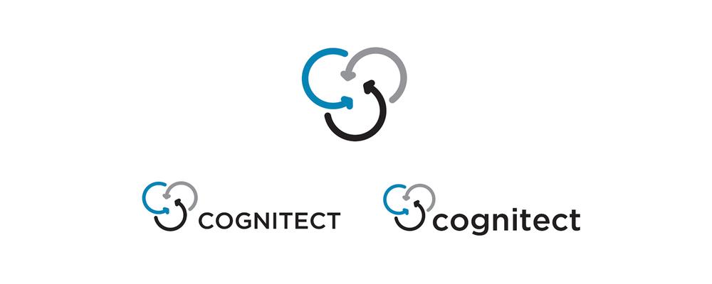 WebLogo_Cognitect5.jpg