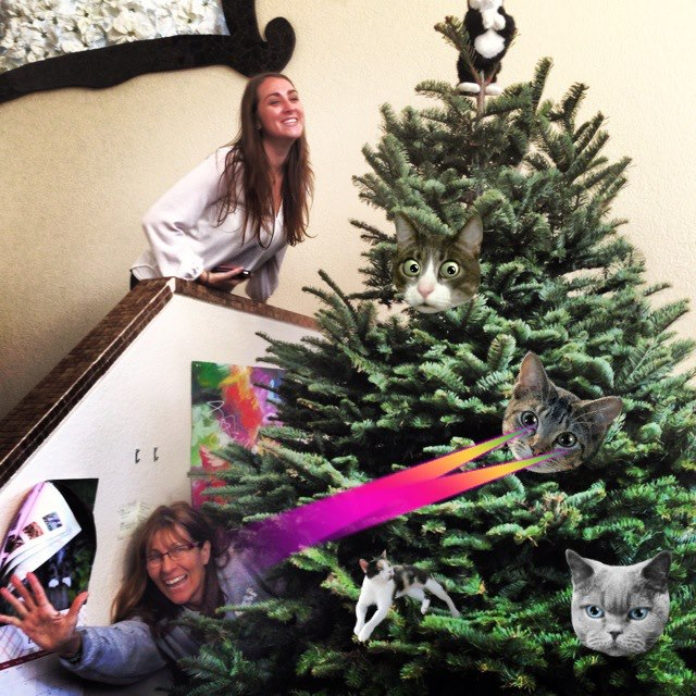 Like our Christmas topper? That's kitty big n tall.