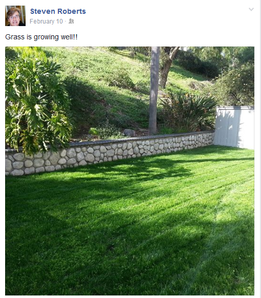 grass is growing well.png