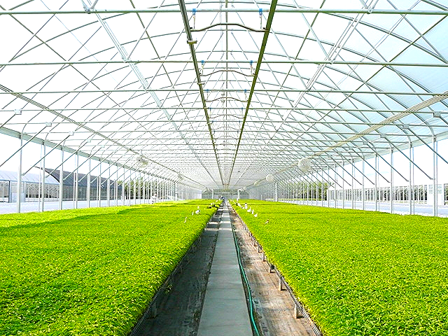The scalable nature of this technology allows for it's operation in virtually any indoor agricultural application, regardless of size.
