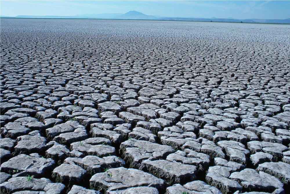 Decreasing arable land.