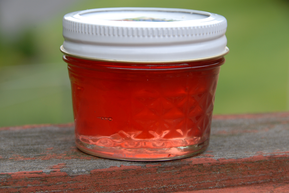 Red Bud Jelly - Photo from Fred Sauceman