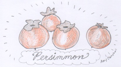 The wild persimmon of Appalcahia (Diospyros virginiana). Illustration here by Amy Campbell.