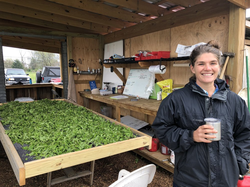 "Brenna Wright (Owner, operator of Abbey Fields Farm, ""Knoxville's Neighborhood Farm"".  http://abbey-fields.com/"
