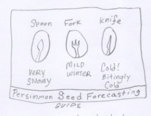 Persimmon prediction guide 1.jpeg