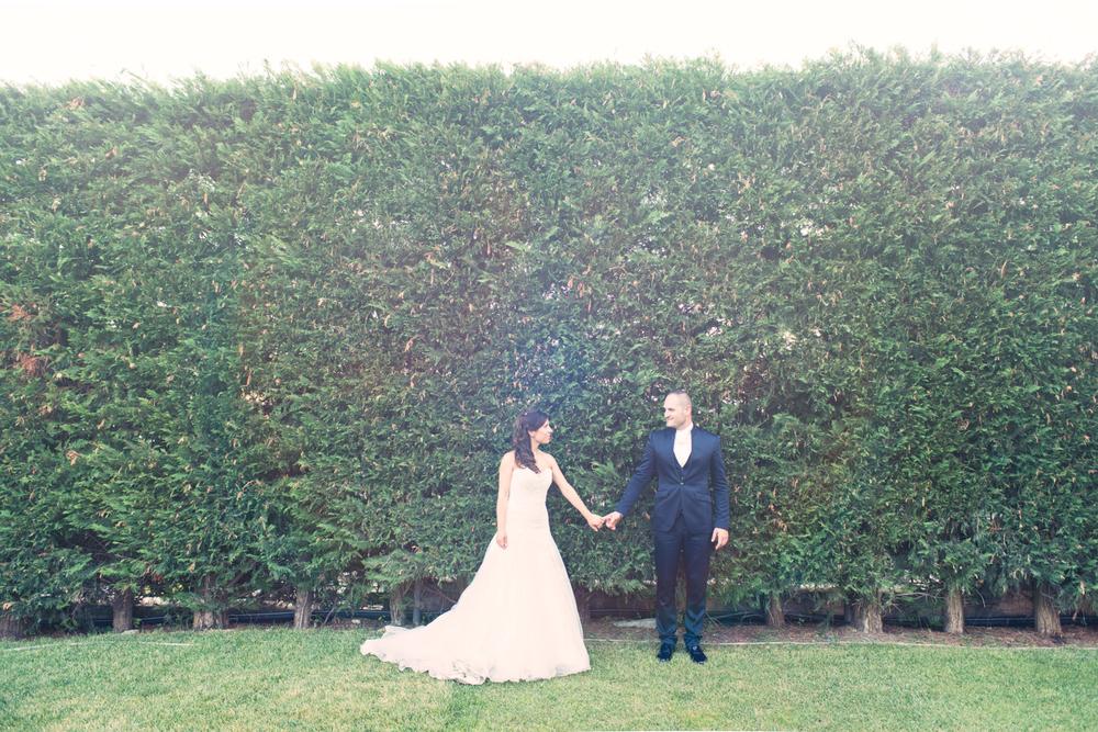 t&m-wed--8.jpg