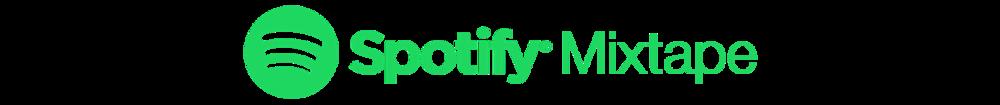 SpotMix Logo.png