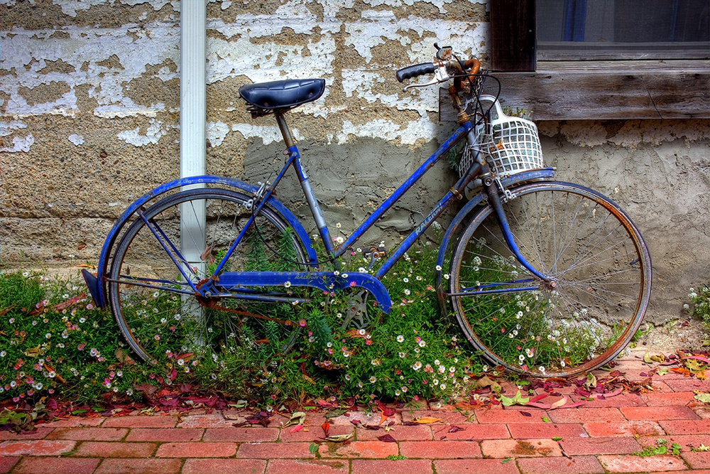 Blue Bicycle.jpg