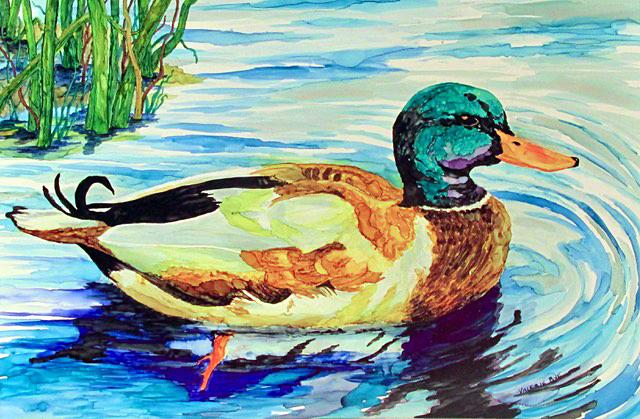 Bye_Quack Quack_web.jpg