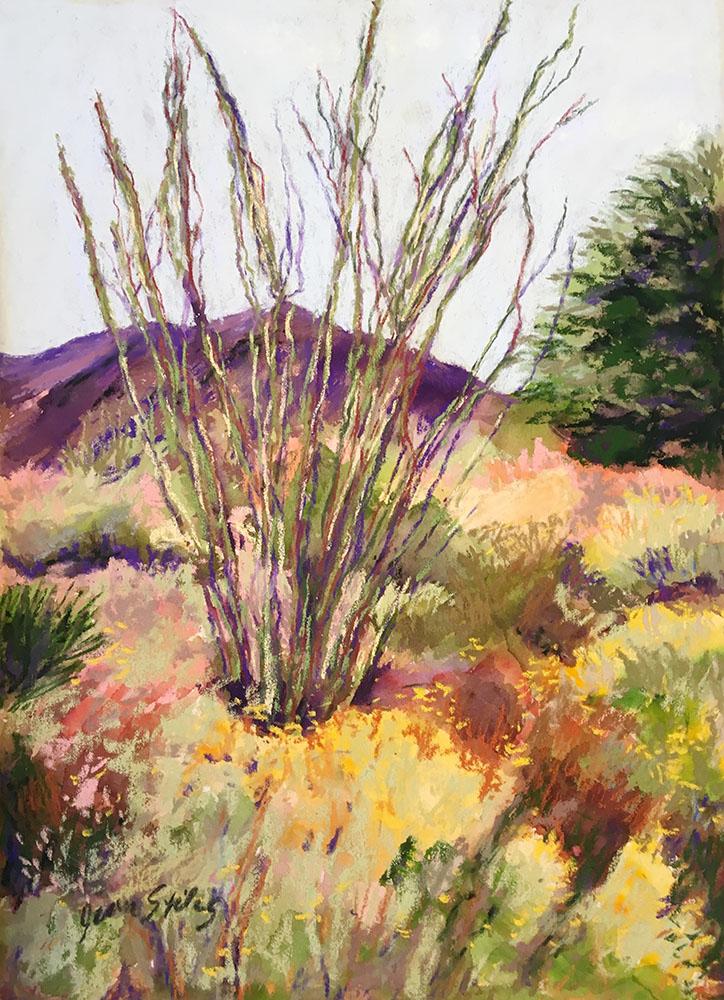 Stiles_Ocotillo, Palm Desert_web.jpg