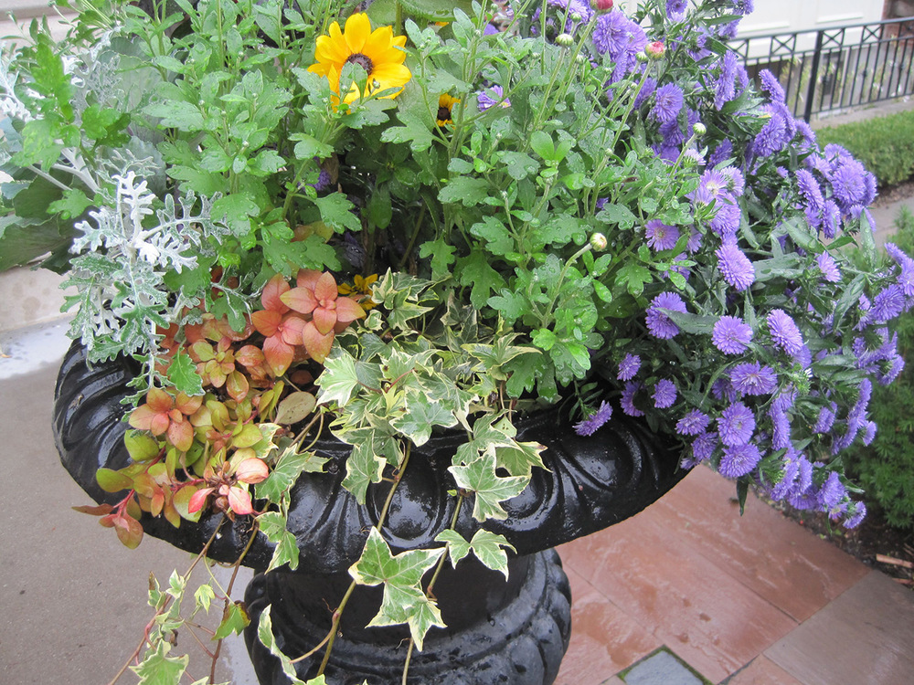 Fall-Containers---07.jpg
