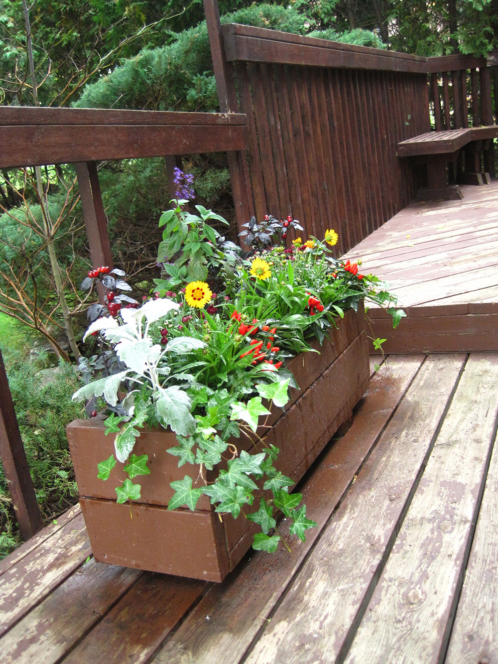 Fall-Containers---06.jpg