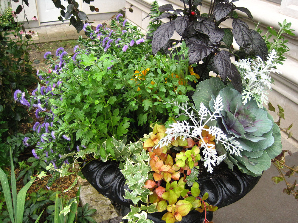 Fall-Containers---09.jpg