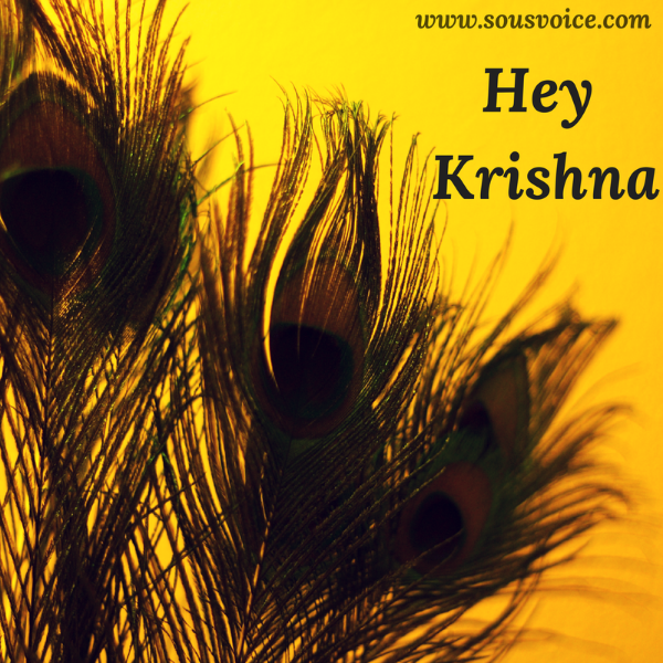 Hey Krishna Sou's Voice