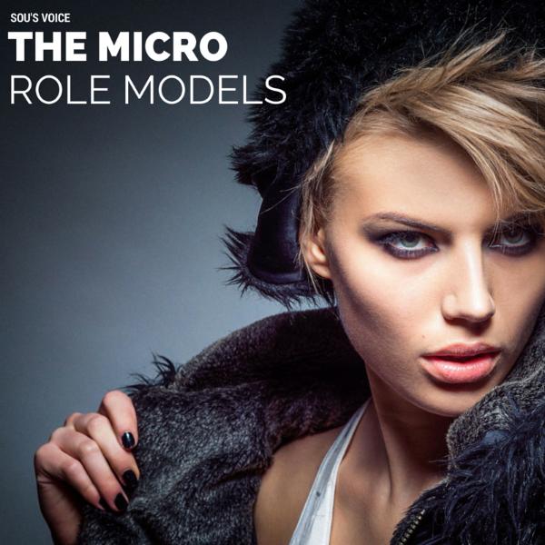 micro celebrity role model sou's voice
