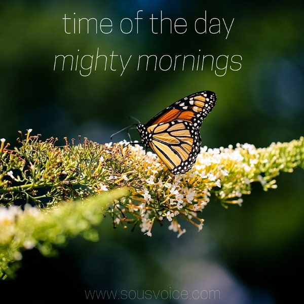 thematic music series time of the day mighty mornings sou's voice