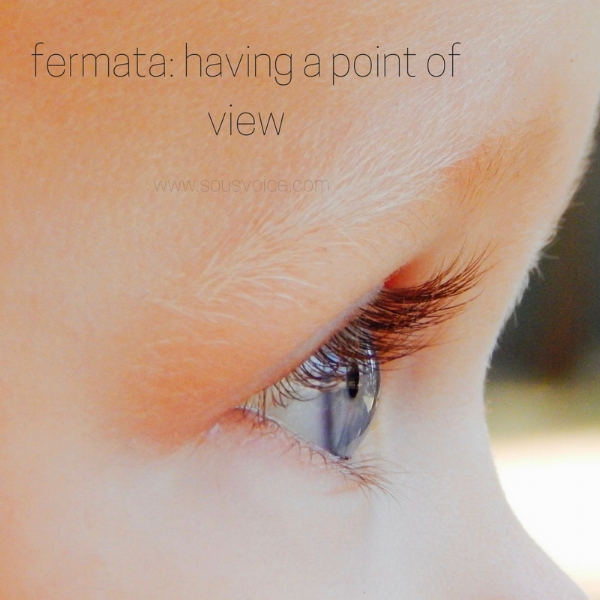 fermata point of view music sou's voice