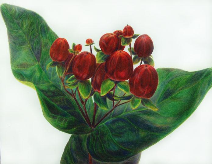 Botanical Study #5
