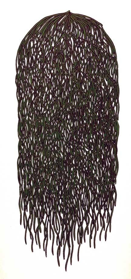 Bunch #2 (green/purple)
