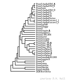 Phylogeny of  Stoned computer viruses (credit: D.H. Hull)