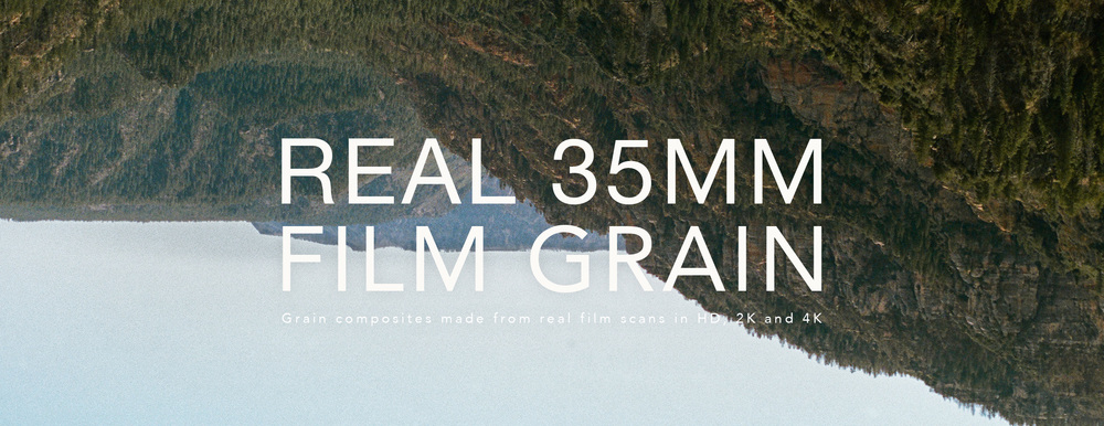 Free real 35mm film grain download.jpg