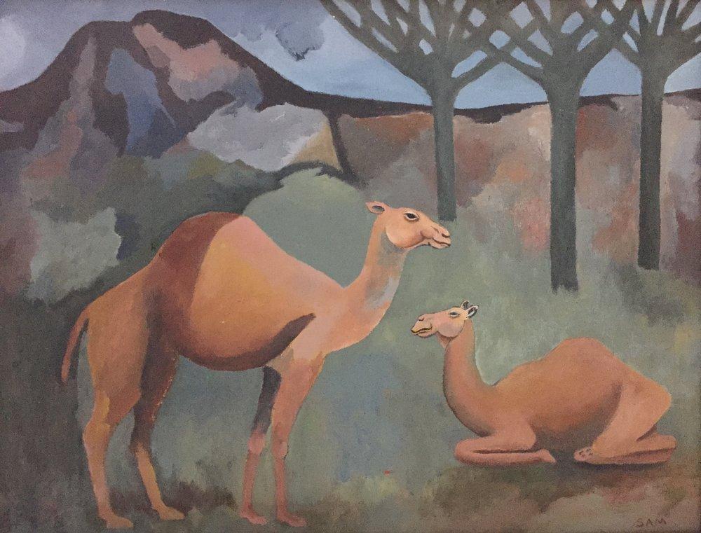 camel1-2.jpg