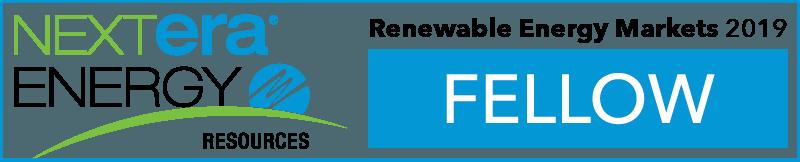 2019 NextEra Fellows Logo.png