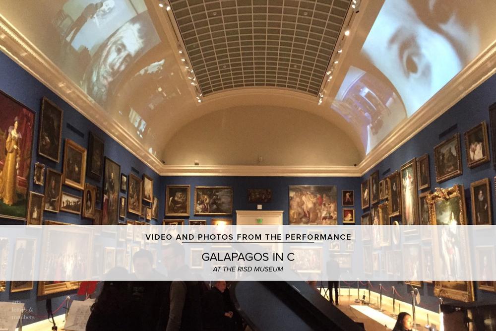 GALAPAGOS_IN_C_06.jpg