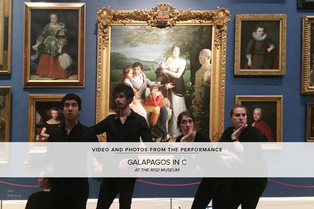 GALAPAGOS_IN_C_05.jpg