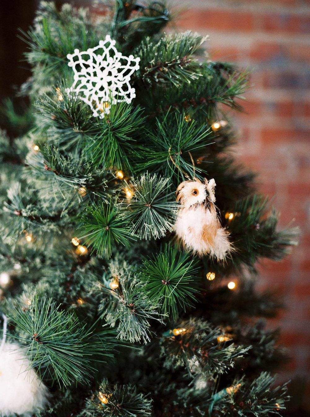 Newlywed_Christmas_14.JPG