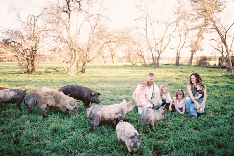 Life with the Family of Yonder Way Farm | cottagehillmag.com