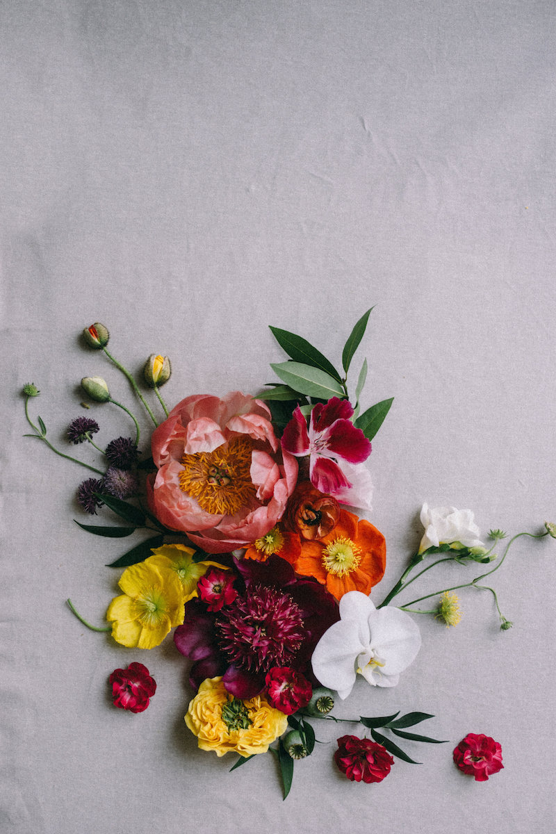 Botanicals & Calligraphy-0013.jpg