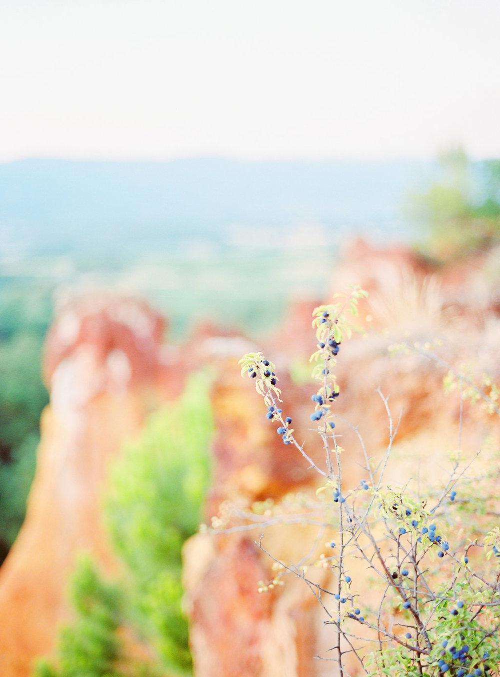 Anna_Provence2016-155OK.jpg