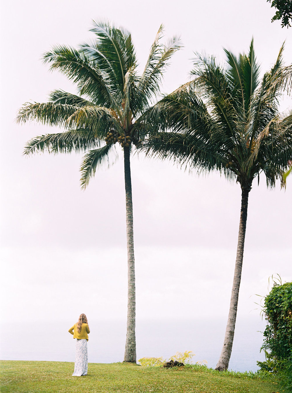 Hawaii Engagement Inspiration from Cottage Hill-2002.jpg