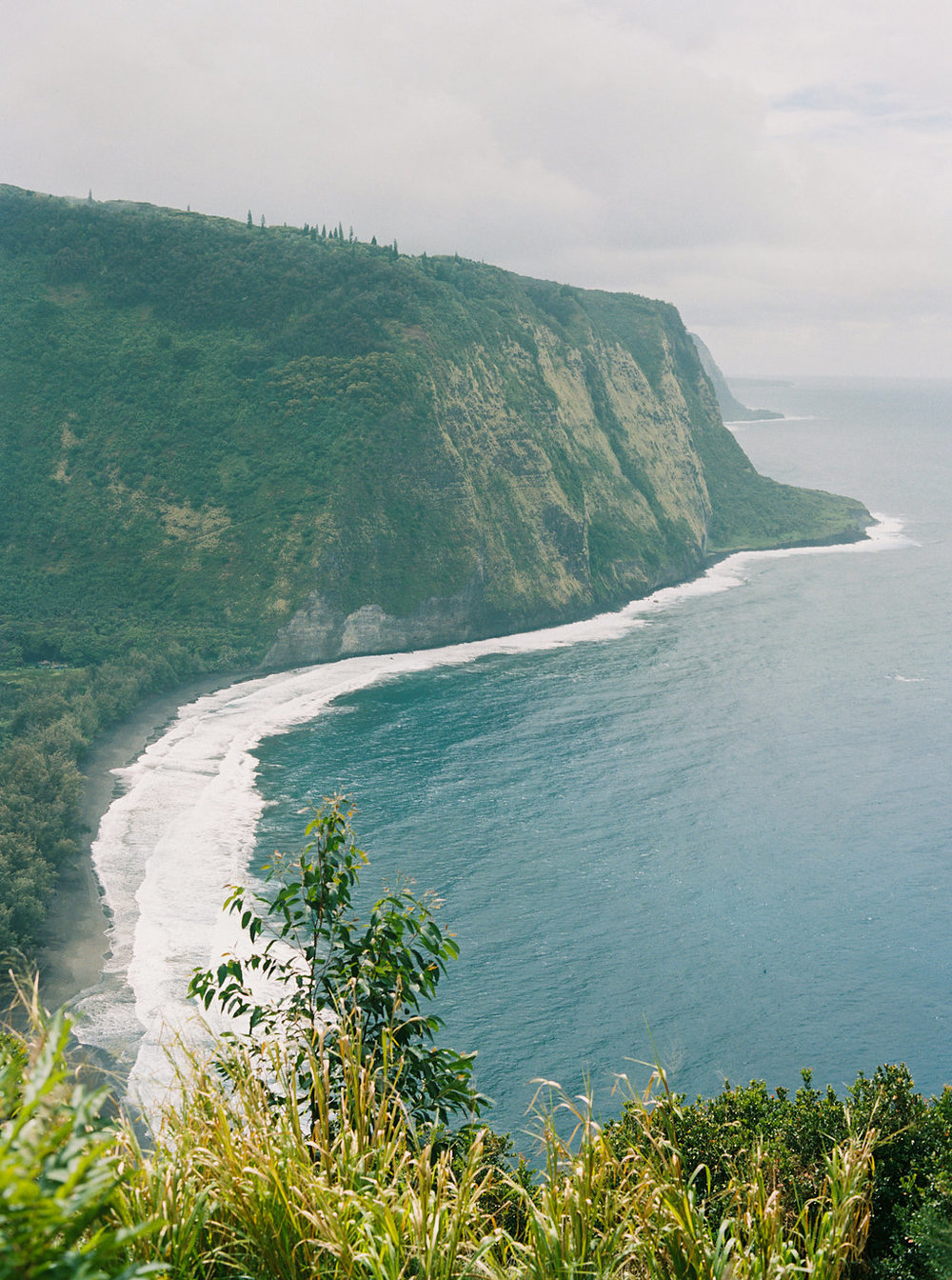 Hawaii Engagement Inspiration from Cottage Hill-2029.jpg