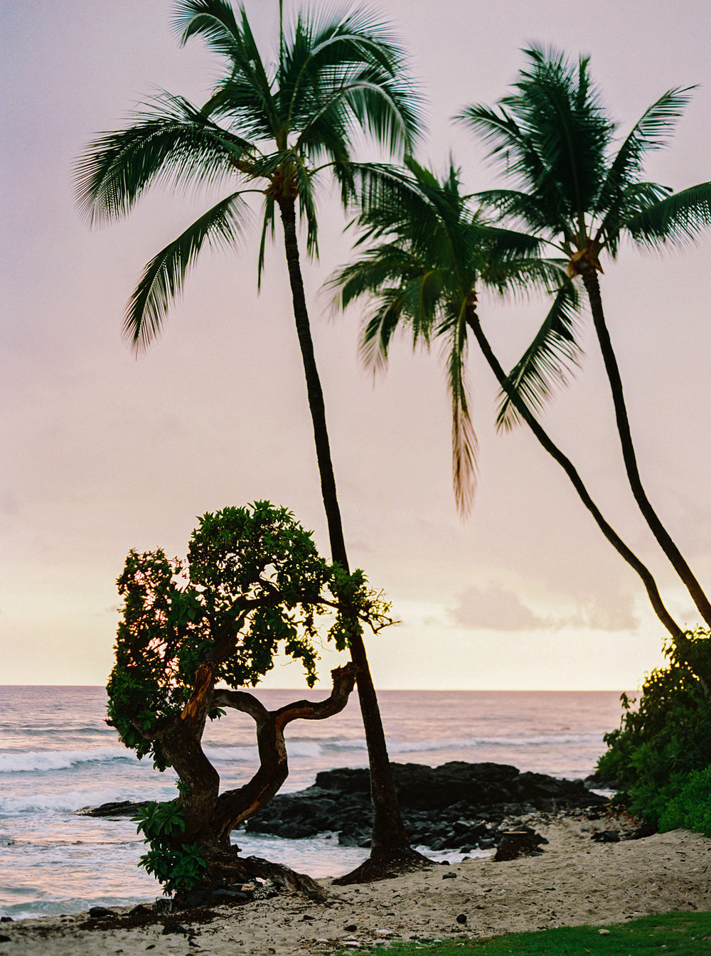 Hawaii Engagement Inspiration from Cottage Hill-2034.jpg