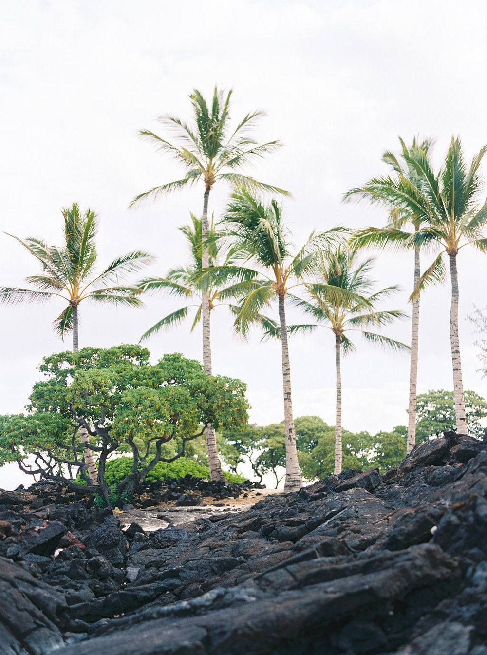 Hawaii Engagement Inspiration from Cottage Hill-2053.jpg