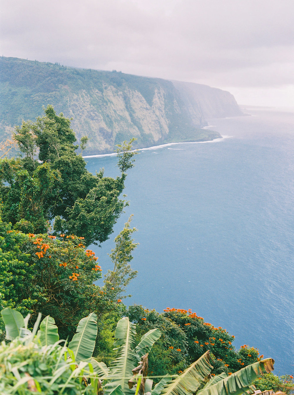 Hawaii Engagement Inspiration from Cottage Hill-2074.jpg