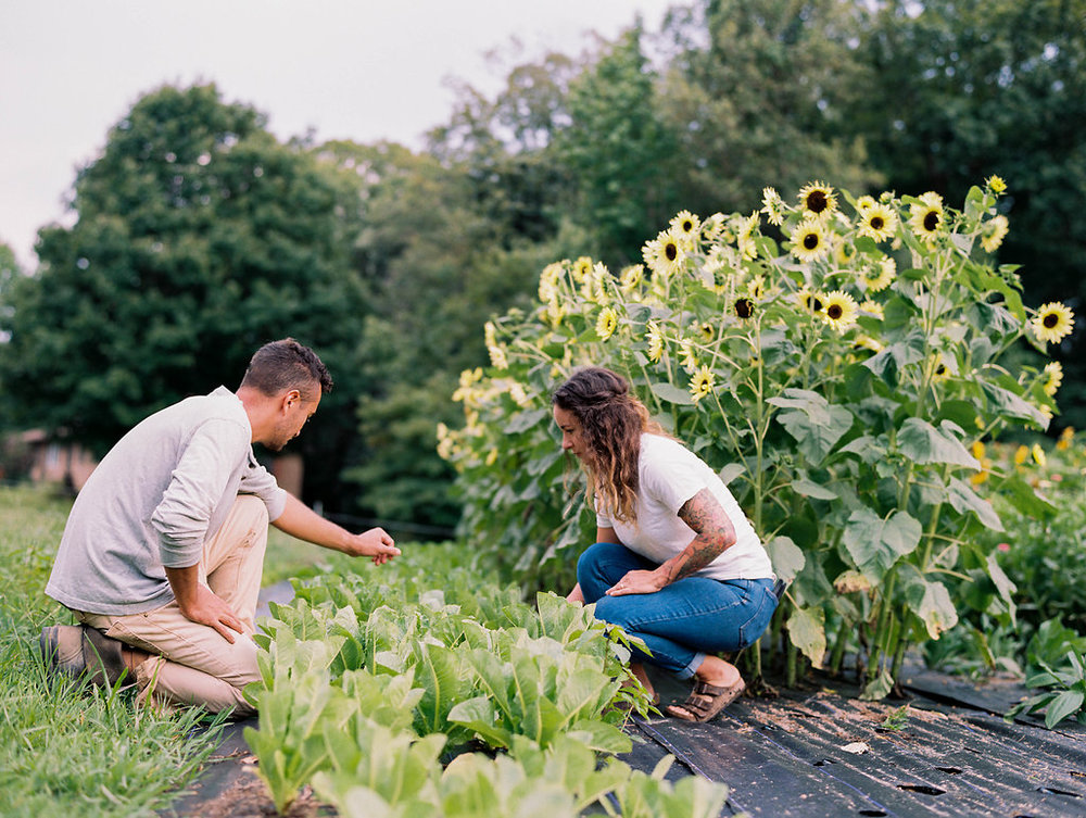 Organic Farm Love Story now on Cottage Hill7.jpg