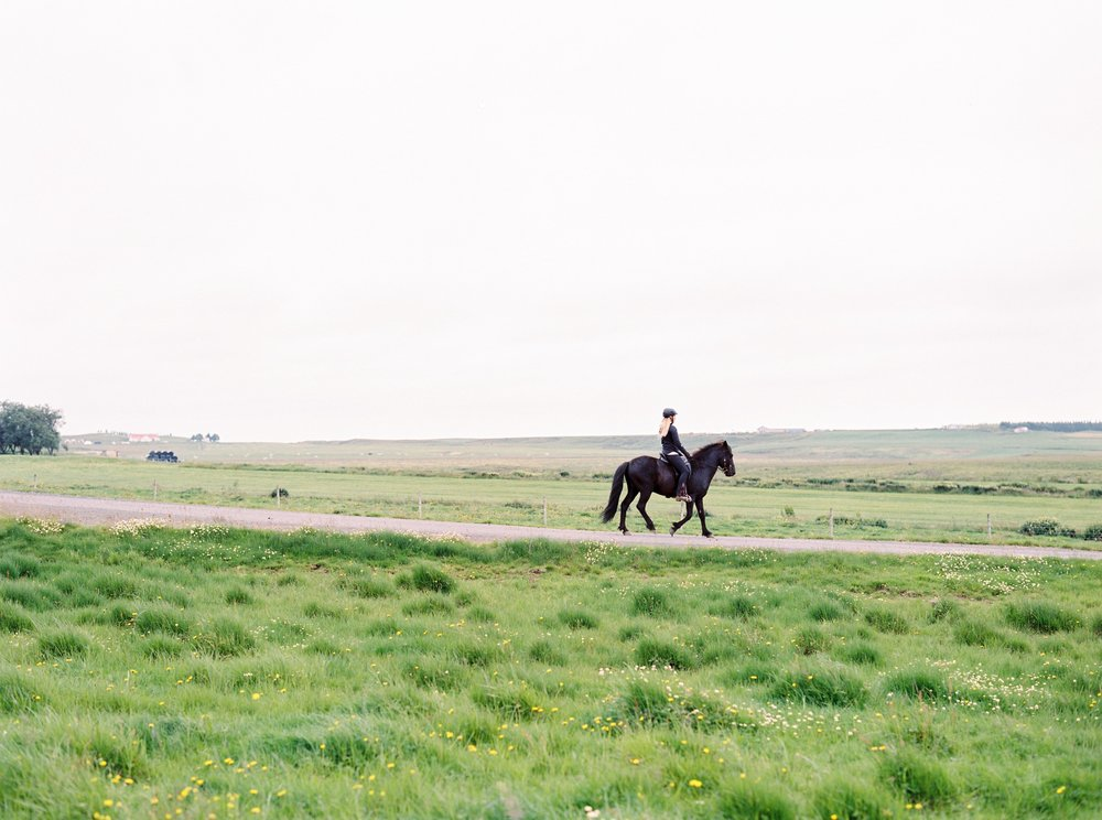 Horses in Iceland by Kristin Sweeting now on Cottage Hill36.jpg