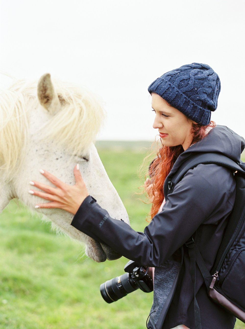 Horses in Iceland by Kristin Sweeting now on Cottage Hill61.jpg