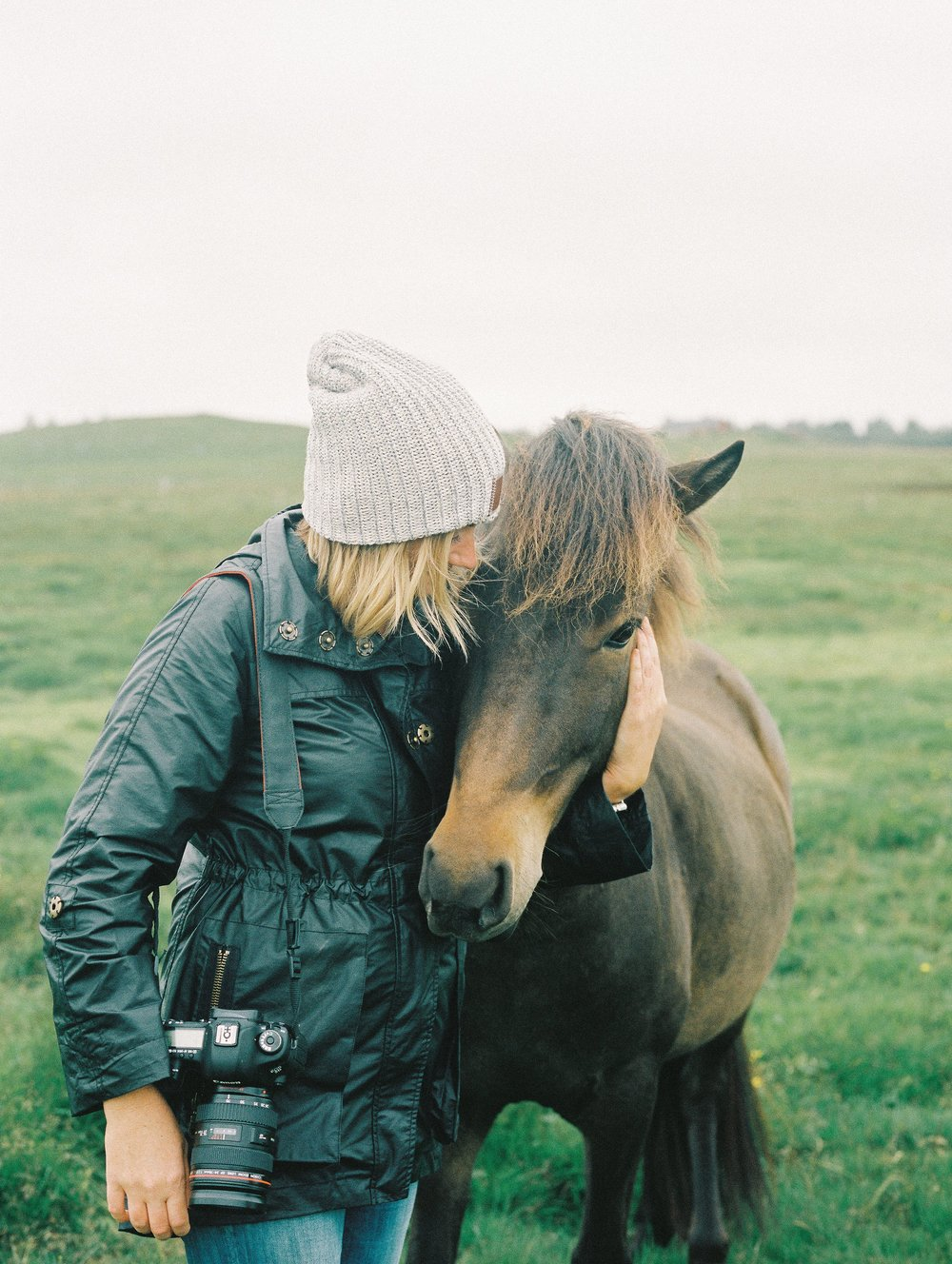 Horses in Iceland by Elli Jane now on Cottage Hill8.jpg